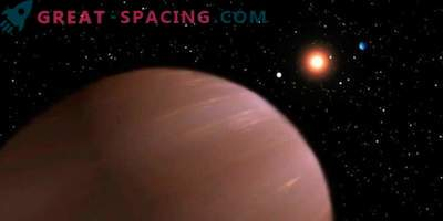 A brown dwarf and a planet or two brown dwarfs?